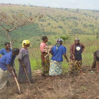 Mission Lubefu 2012